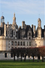 France, Chambord Castle, trees, meadow