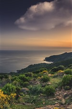 Preview iPhone wallpaper France, Corsica, Mediterranean, sea, beach, rocks, sunset