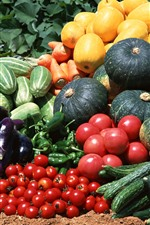 Preview iPhone wallpaper Harvest, vegetables, cucumber, pumpkin, tomatoes, peppers