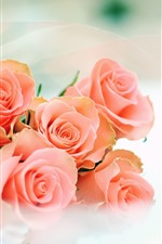 Preview iPhone wallpaper Pink roses, bouquet, hazy