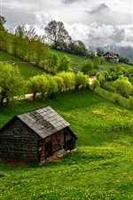 Preview iPhone wallpaper Romania, green, trees, clouds, beautiful village