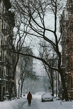 Preview iPhone wallpaper Snow, street, city, trees, winter