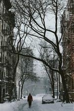 Snow, street, city, trees, winter
