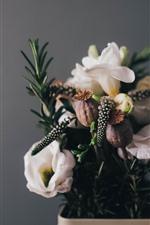 Algumas flores, buquê, vaso