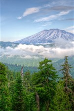 Preview iPhone wallpaper Washington, USA, mountains, trees, snow, clouds, nature