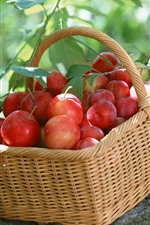 Preview iPhone wallpaper Basket, red plums, fresh, harvest