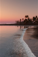 Preview iPhone wallpaper Beach, coast, sea, palm trees, sunset, tropical