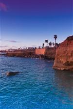 Синее море, скалы, пальмы, побережье, тропики