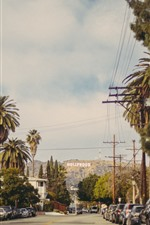 Hollywood, road, trees, cars, city, USA