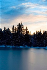 Preview iPhone wallpaper Lake, trees, snow, winter, sunset, dusk