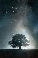 Preview iPhone wallpaper Lonely tree, starry, night, sky