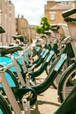 Muitas bicicletas, cidade, rua