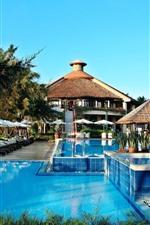 Resort, piscina, palmeiras, tropical