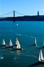 Sailboats, blue sea, bridge, USA