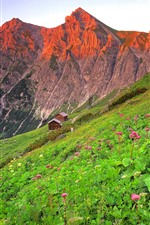 Preview iPhone wallpaper Austria, houses, mountains, slope, pink flowers