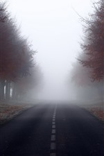 Preview iPhone wallpaper Autumn, trees, red leaves, road, fog, morning