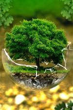 iPhone壁紙のプレビュー ガラス玉、一本の木、クリエイティブなデザイン写真