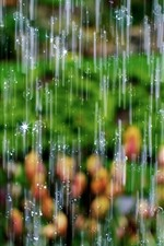 Preview iPhone wallpaper Heavy rain, water droplets, shine