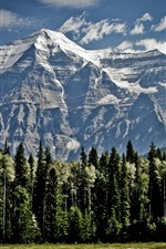 Preview iPhone wallpaper Mountains, trees, snow, clouds, nature landscape