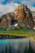 Preview iPhone wallpaper Mountains, trees, sunshine, lake, fog