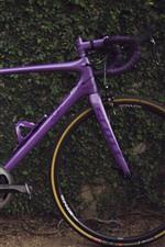 Preview iPhone wallpaper Purple bike