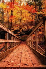 Preview iPhone wallpaper Wood bridge, trees, red leaves, autumn