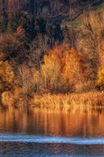 Preview iPhone wallpaper Autumn, trees, river, nature scenery