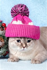 Preview iPhone wallpaper Cute cat, hat, snow, decoration