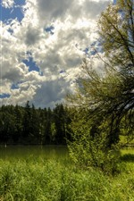 France, trees, green, pond, clouds, sky, summer