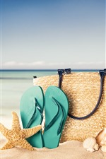 Handbag, starfish, flip flop, beach