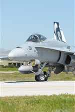 Preview iPhone wallpaper McDonnell Douglas F-18C fighter