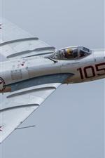 MiG-17 jet fighter