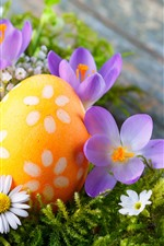 One orange Easter egg, pink and white flowers
