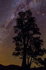 iPhone壁紙のプレビュー 一本の木、シルエット、星空、星、夜