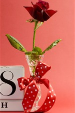 Preview iPhone wallpaper Red rose, March 8, vase, ribbon