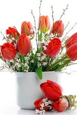 Preview iPhone wallpaper Red tulips, white flowers, vase, white background