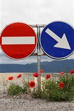 Preview iPhone wallpaper Road sign, red poppy flowers