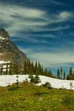 Preview iPhone wallpaper Rocky mountains, Glacier National Park, trees, snow