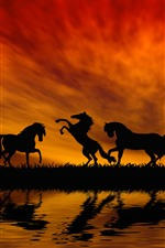 Preview iPhone wallpaper Some horses, silhouette, grass, river, water, sunset, red sky