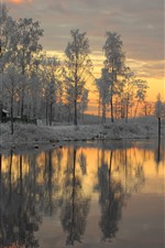 Preview iPhone wallpaper Sweden, snow, trees, sunset, river, winter