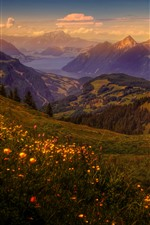 Switzerland, mountains, meadow, houses, trees, dusk