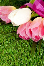Preview iPhone wallpaper Tulips, bouquet, grass, meadow