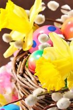Narcisos amarelos, ovos de Páscoa, cesta