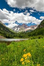 Colorado, montanhas, lago, vale, flores, nuvens, EUA