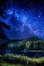 Preview iPhone wallpaper Croatia, Trakoscan, stars, grass, trees, river, night