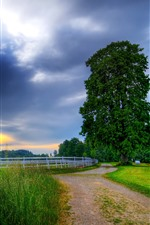 Fence, road, grass, trees, houses, clouds