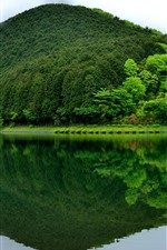 Preview iPhone wallpaper Fujinomiya, Lake Tanuki, mountain, green, water reflection, Japan