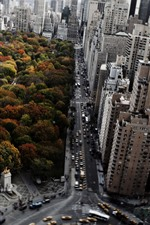 Preview iPhone wallpaper New York, park, trees, city, skyscrapers, road, cars, autumn