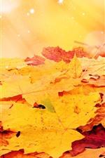 iPhone壁紙のプレビュー オレンジ色のカエデの葉、星、輝き
