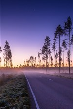 Preview iPhone wallpaper Road, trees, fog, sky, morning